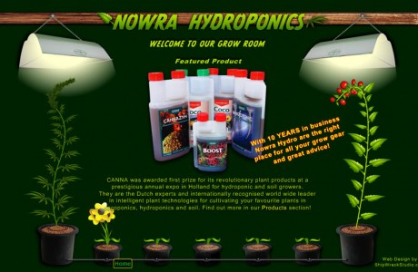 A 100% custom in-house project. This Hydro Shop web page showcases our custom graphic design and Actionscript programming. All graphics started as photos of the hydro shops actual products and was heavily cleaned/edited in-house. Then we carefully designed the swinging/illuminating lights, flower pot menu system, and heavily customised software generated growng/maturing plants that evolve as you browse the site!